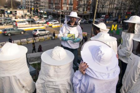 Se lancer dans l'apiculture urbaine
