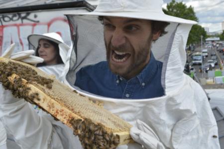 Comment devenir apiculteur urbain